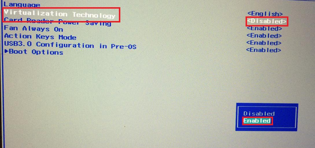 BIOS-nastroika VMware-2